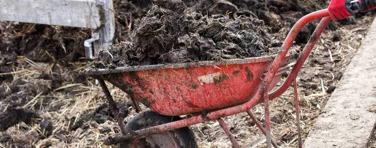Barnyard Waste - 2nd Most Common Cause of Well Water Contamination